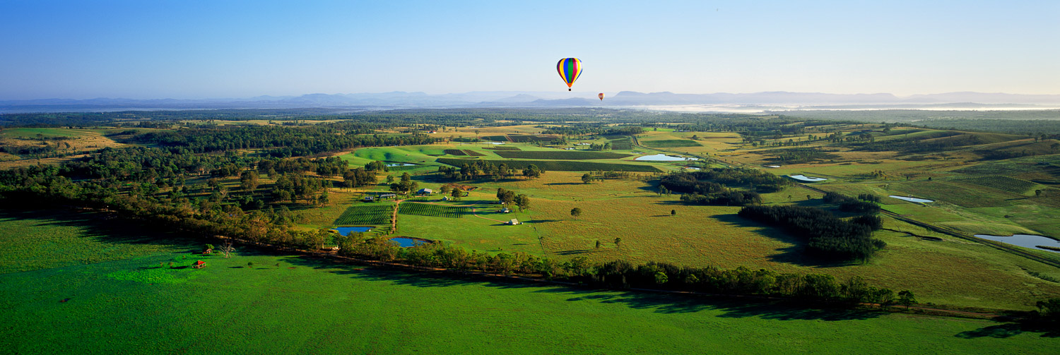 Hot air balloons rising over the Hunter Valley vineyards, NSW, Australia.
