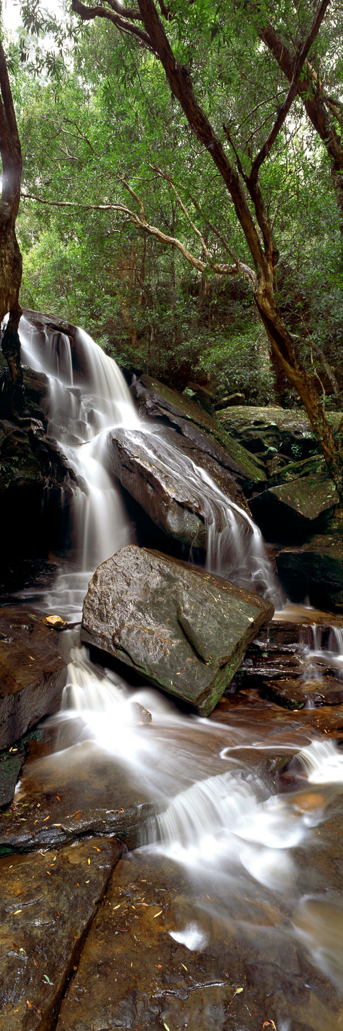 One of the levels of Somersby Falls, Central Coast, NSW, Australia.