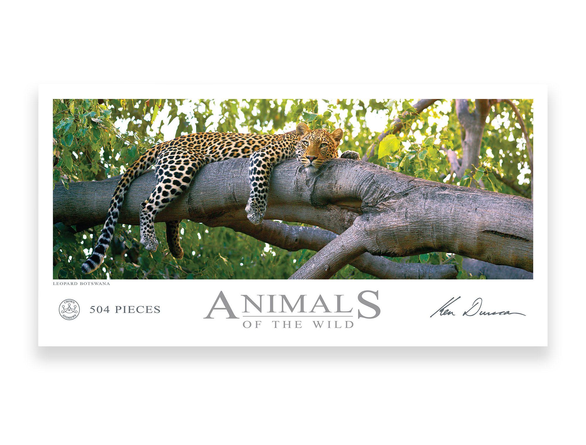 Leopard Botswana 504 Piece Puzzle