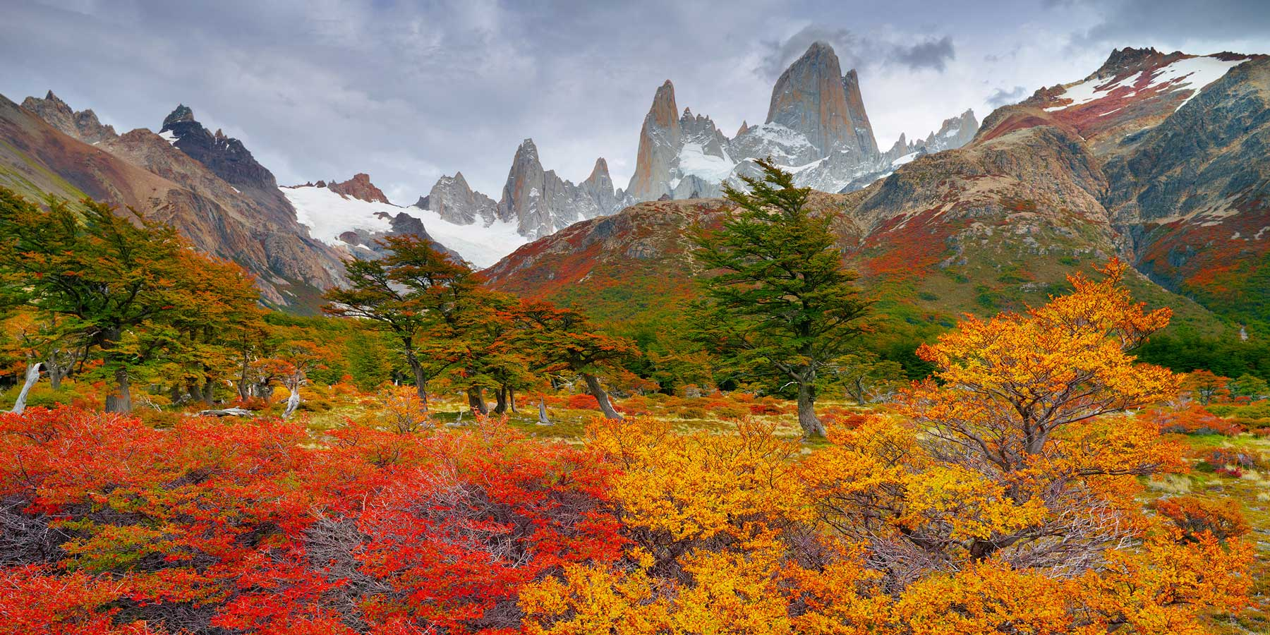Autumn colours of Patagonia against the backdrop of Mount Fitzroy and glaciers