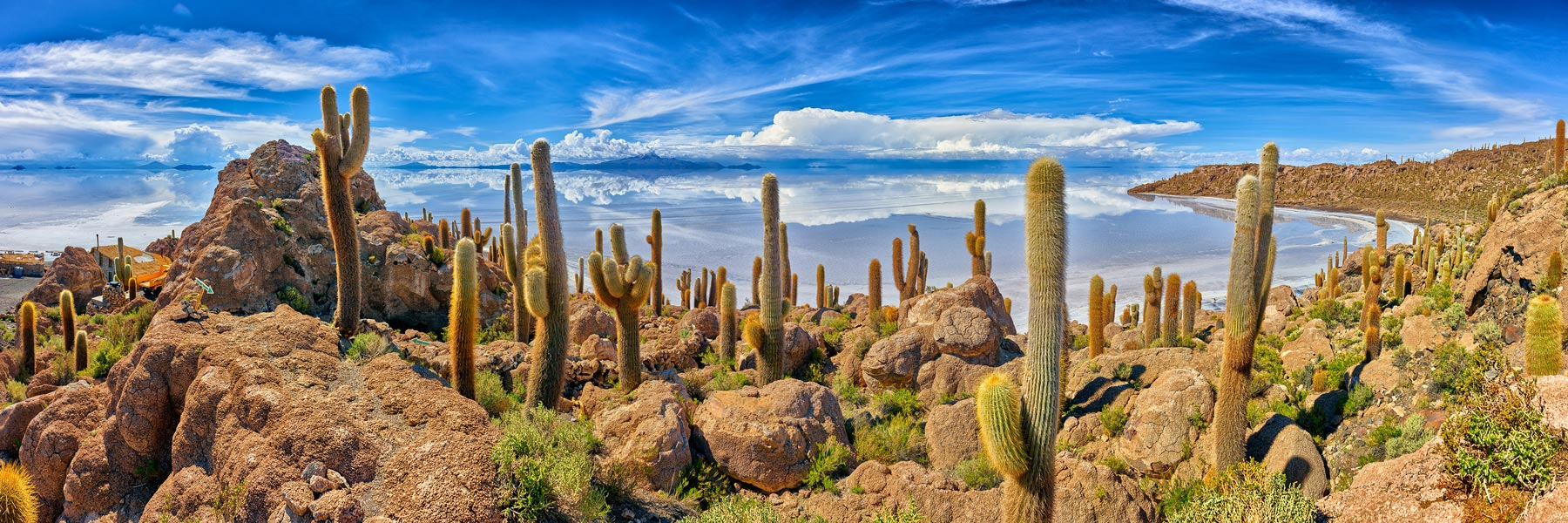 A cactus island in the middle of Salar de Uyuni, Bolivia.
