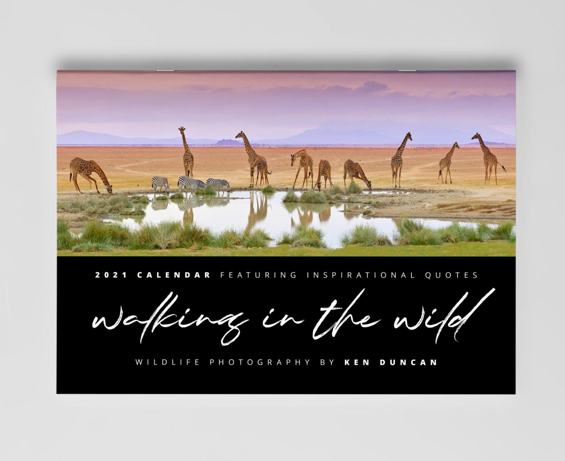 2021 Walking in the Wild A4 Calendar