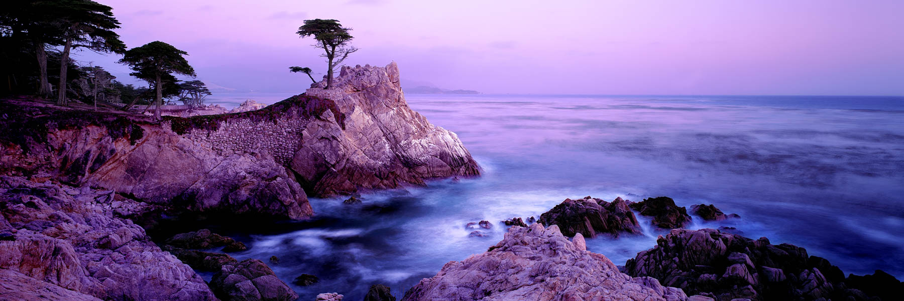 A dreamy pastel sunrise over The Lone Cypress, Carmel, California, USA.
