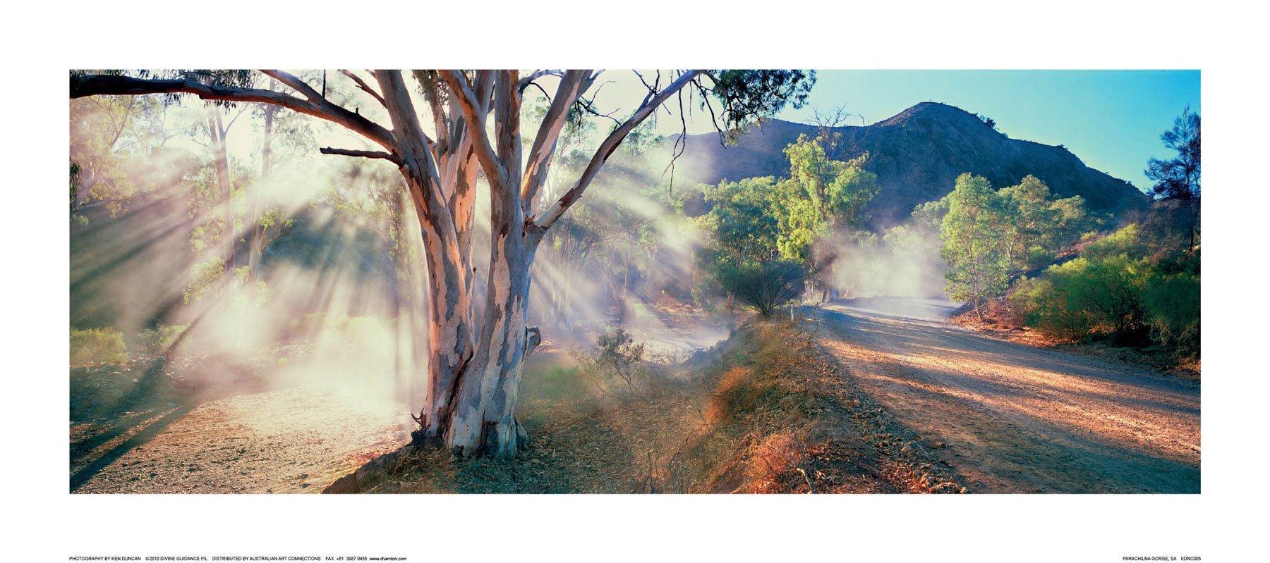 Parachilna Gorge, Flinders Ranges, SA