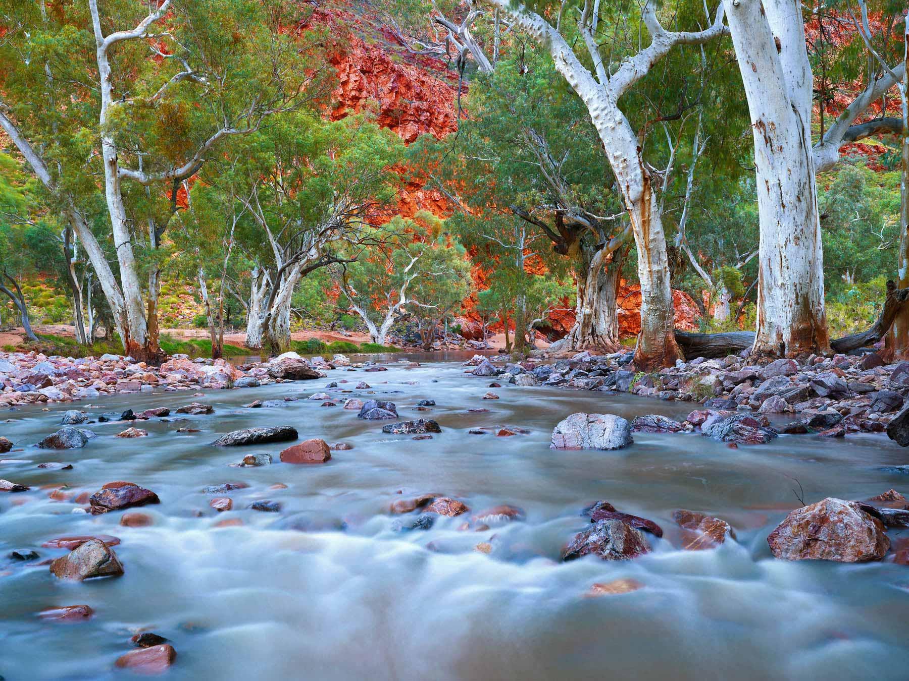 Ormiston Gorge in flood after heavy rain, Central Australia, NT.