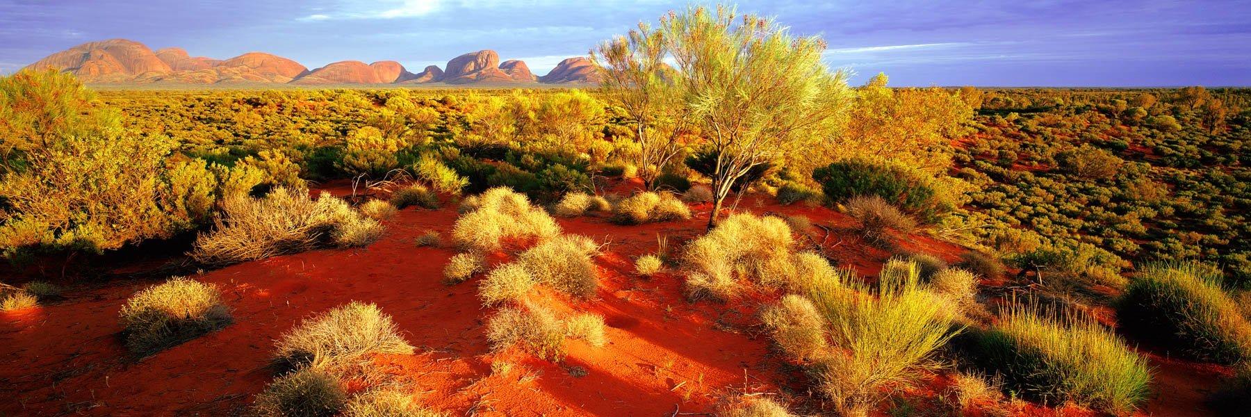 View across the desert to Kata Tjuta, NT, Australia.