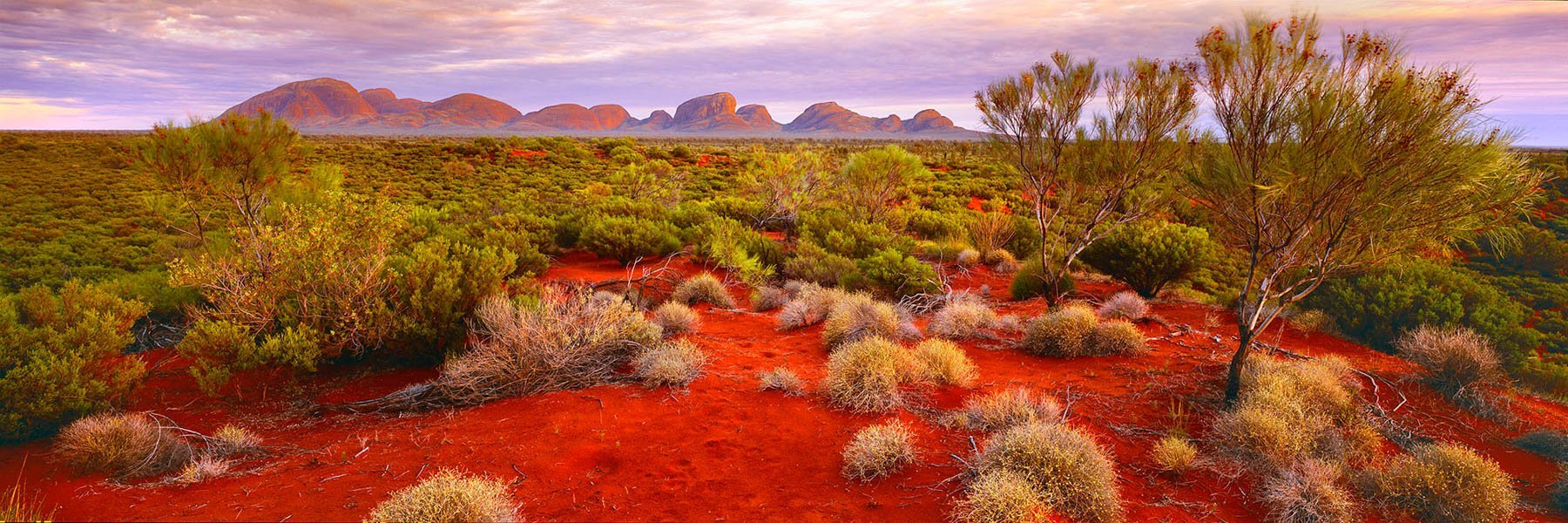 Sunset over the desert, Kata-Tjuta, NT, Australia.