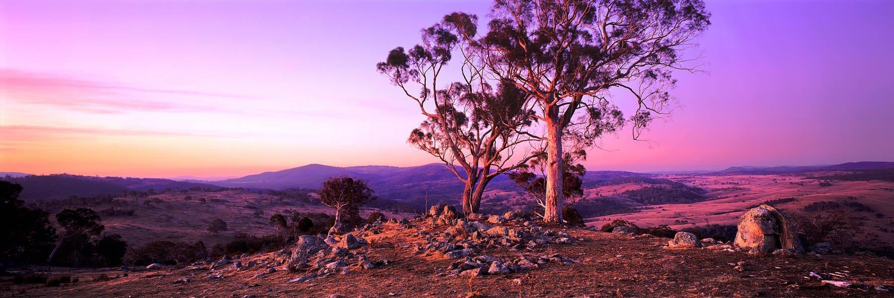 Pastel sunset over a farm, Queenbeyan, NSW, Australia.