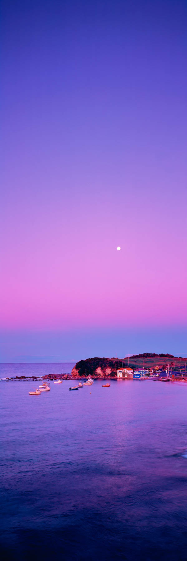 Full moon rising through the pastel twilight over The Haven, Terrigal, NSW, Australia.