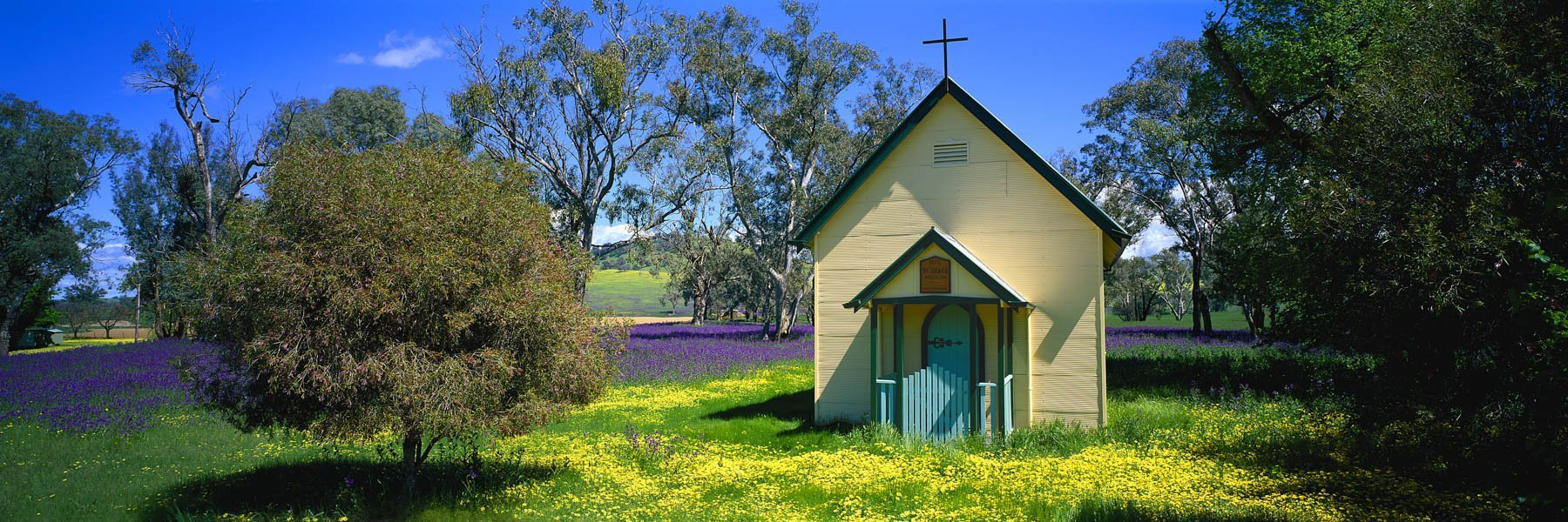 St Luke's Church, Mullengandra, surrounded by a sea of wildflowers.