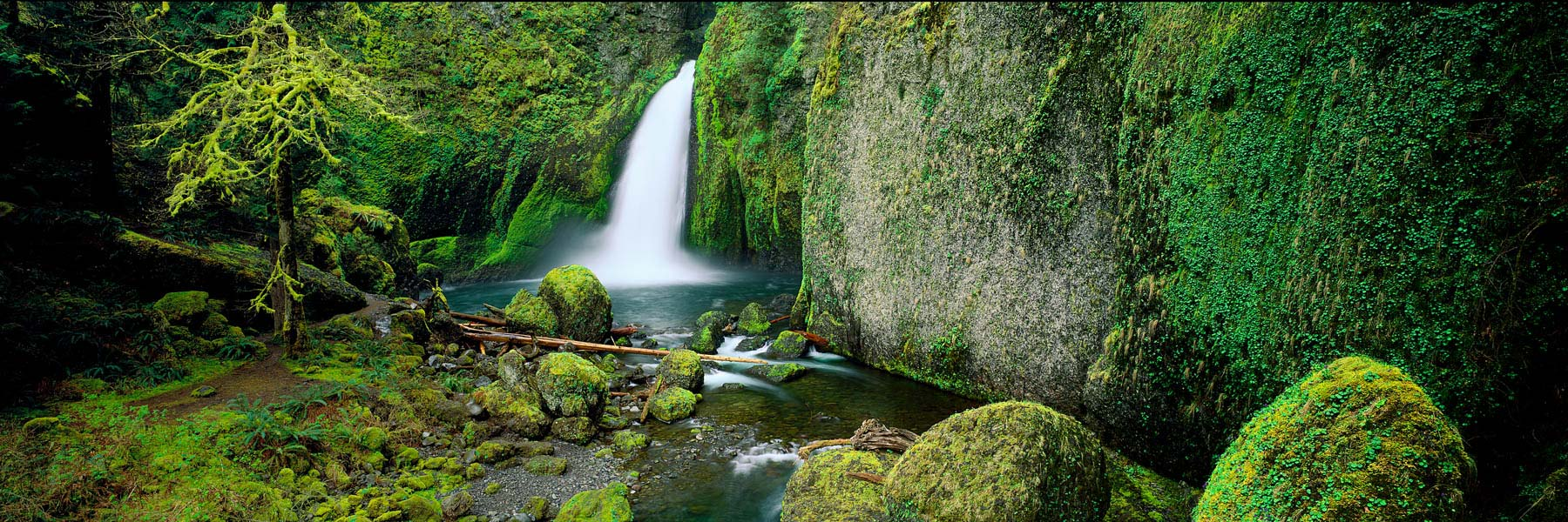 Wahclella Falls flowing over moss-covered rocks, Columbia Wilderness, Oeregon, USA.