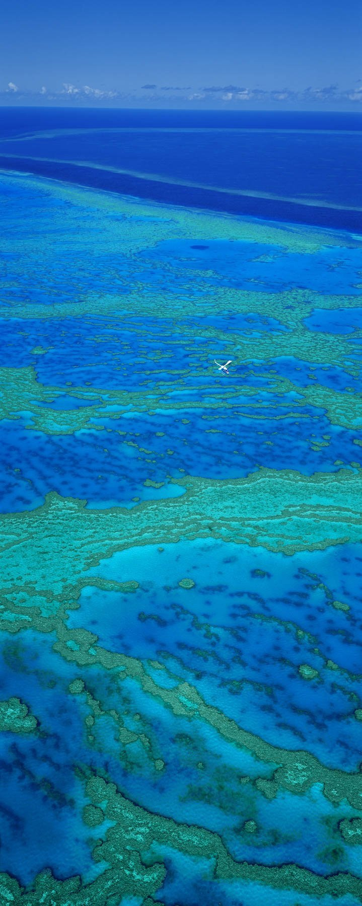 Great Barrier Reef, Qld, Australia