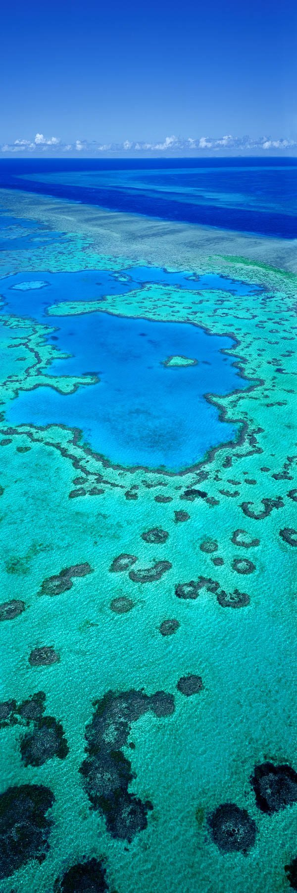 An aerial view of Heart Reef, Whitsundays, Qld, Australia.