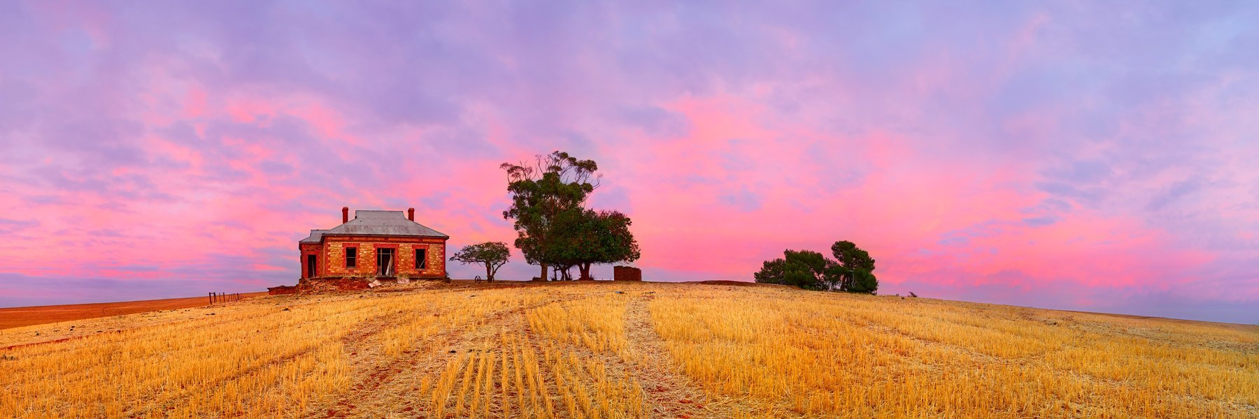 An abondoned homestead in a wheat field, Burra, SA, Australia.