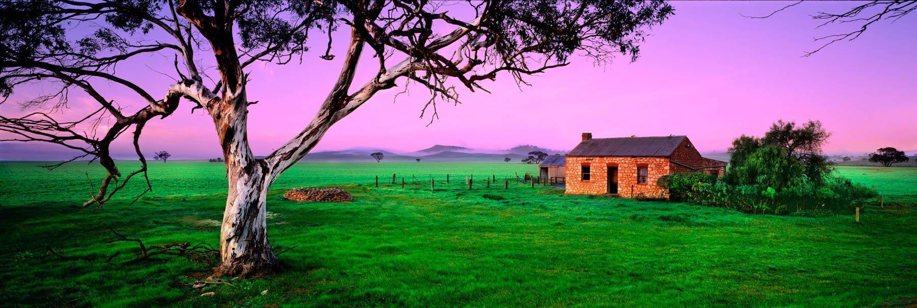 A glorious pink sunrise near Eudunda, SA, Australia.