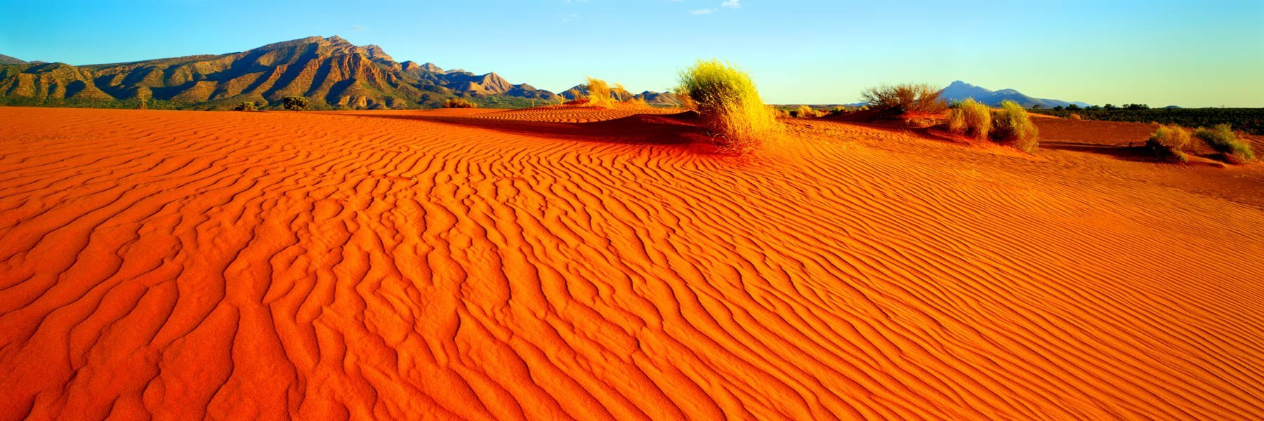 Wind-etched patters in bright red sand dunes, Flinders Ranges, SA, Australia.