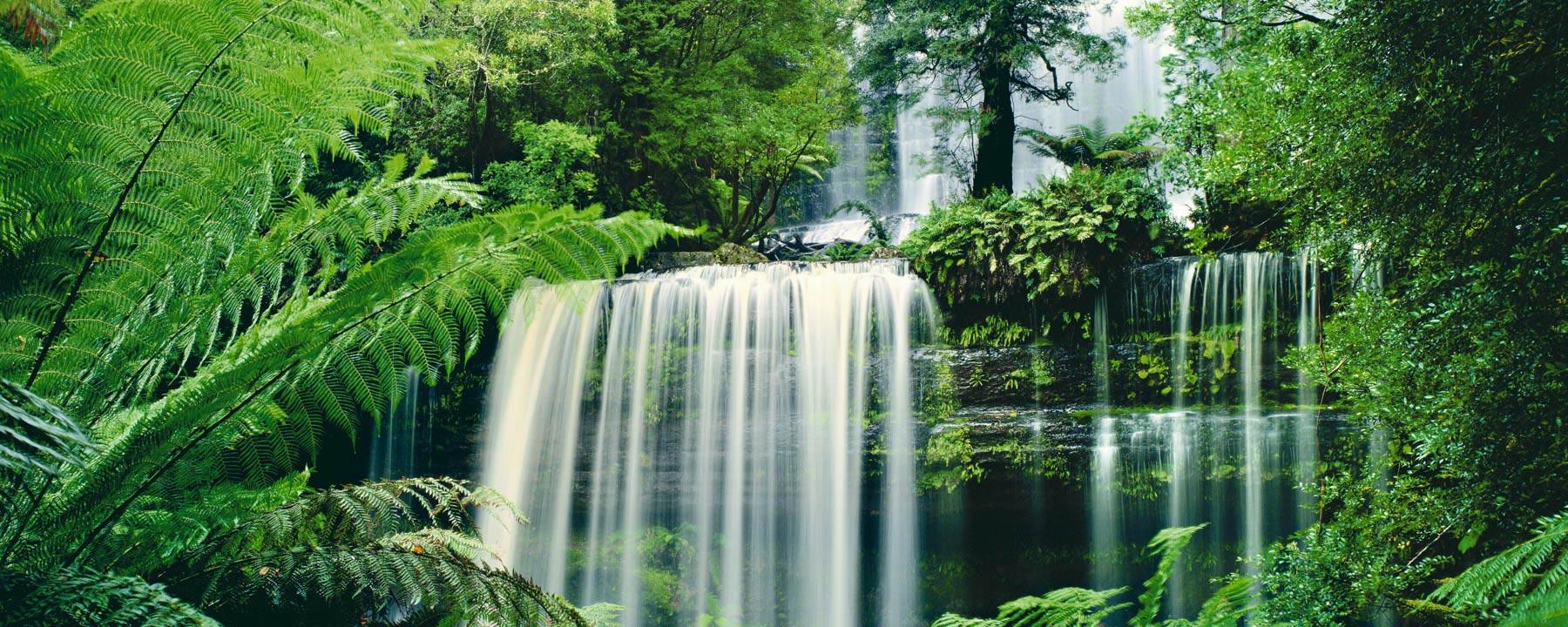 Gift of Life, Russell Falls, Australia