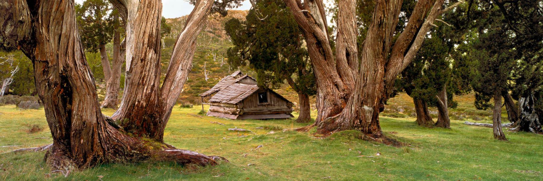 Overcast light at Dixons Kingdom Hut, Tasmania, Australia.