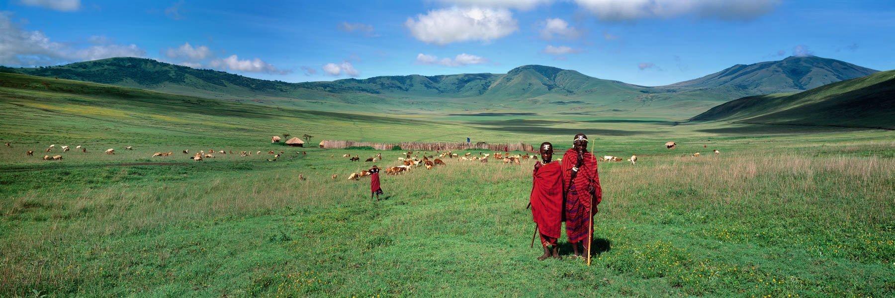 Young Masai tribesmen tending their catrtle, Ngorongoro Crater, Tanzania, Africa.