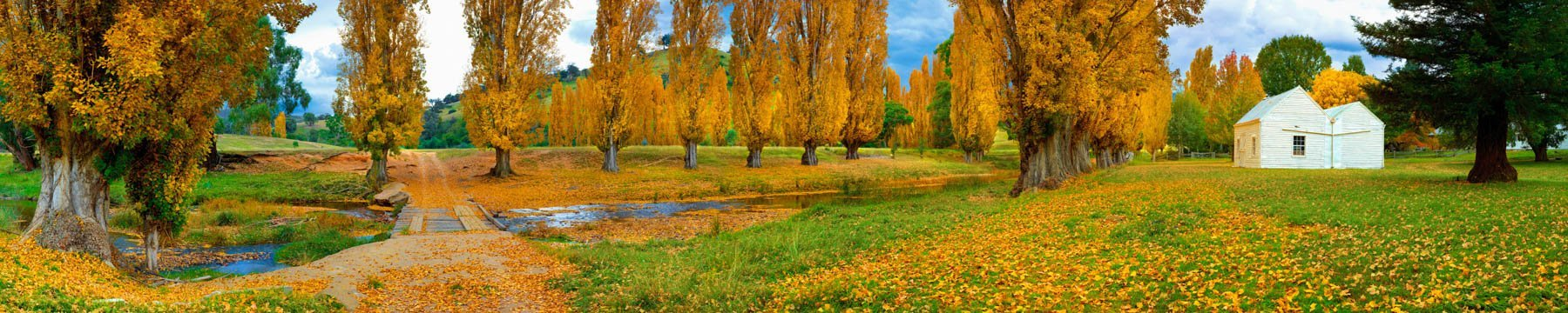 Beautiful autumn colours on display at Bindi Station, Omeo Valley, Victoria, Australia.