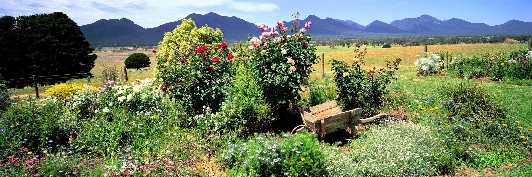 A delightful country garden, Mirranatwa Vallery, Victoria, Australia.