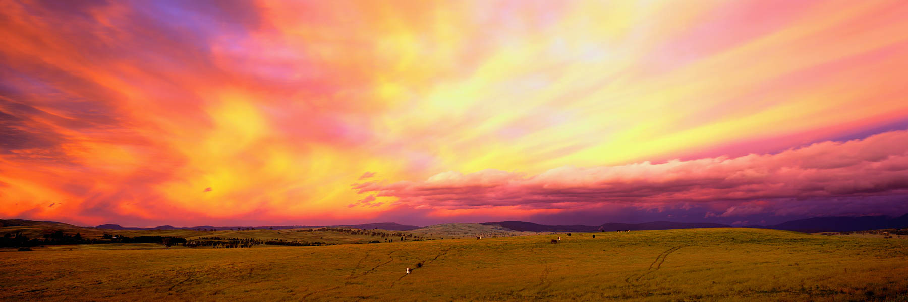 A blazing sunset lighting up the sky over farmlands at Mansfield, Victoria, Australia.