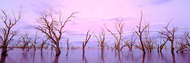 Pastel hues of Twilight on Lake Victoria, Australia.