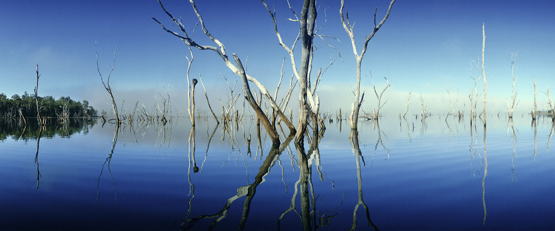 Morning mist rising off Lake Tinaroo, Qld, Australia.