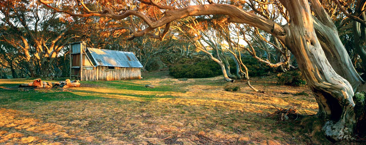 Golden light and afternoon shadows at Wallace Hut, Alpine National Park, Victoria, Australia.