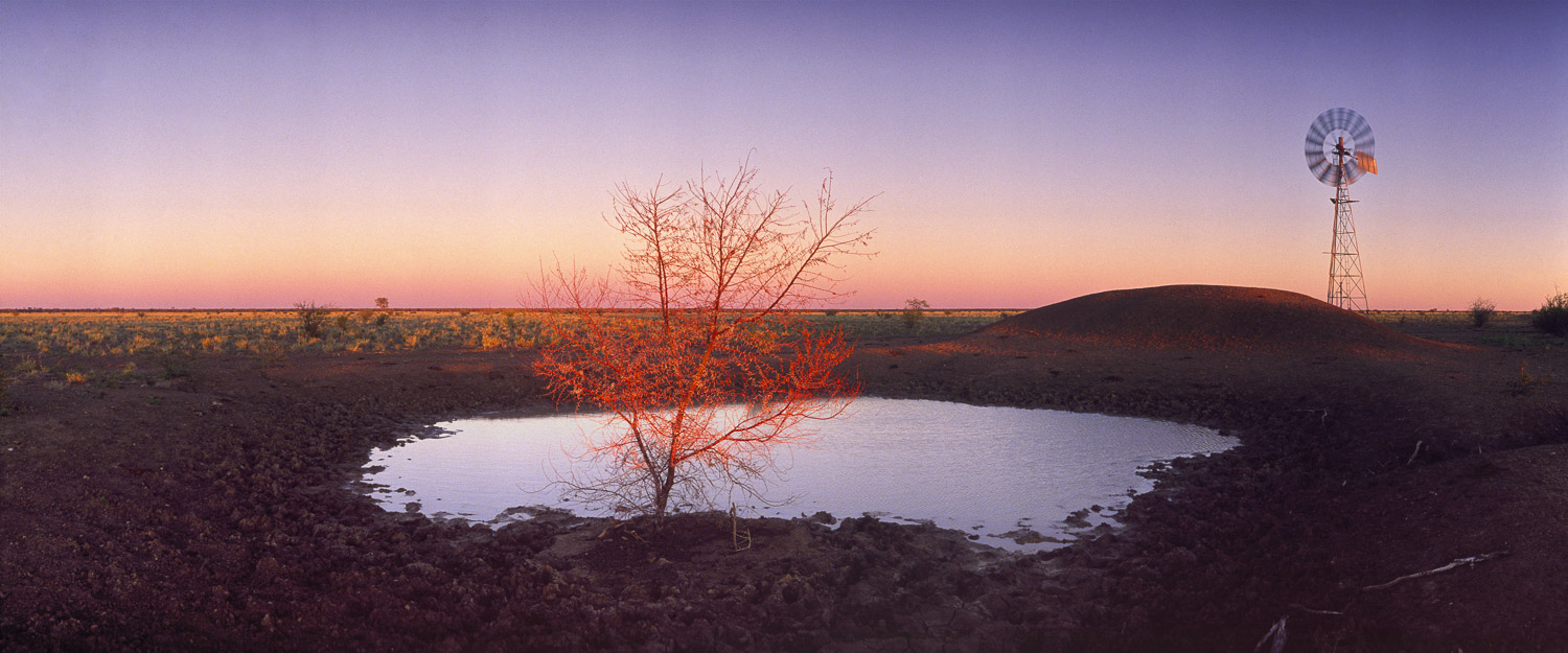 Light reflecting on a tree near to a dam and windmill in Cunnumulla, QLD.
