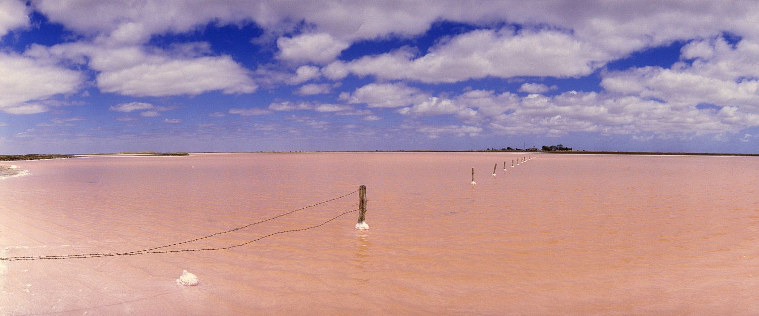 A pink lake at Tailem Bend in South Australia.